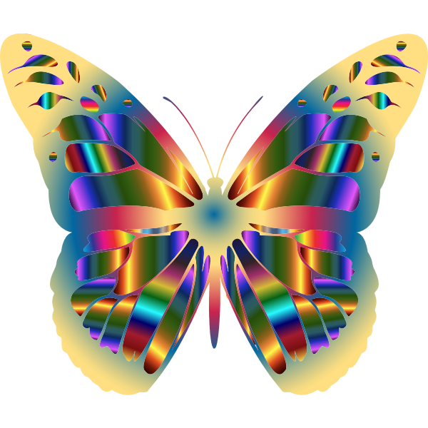 Iridescent Monarch Butterfly 14