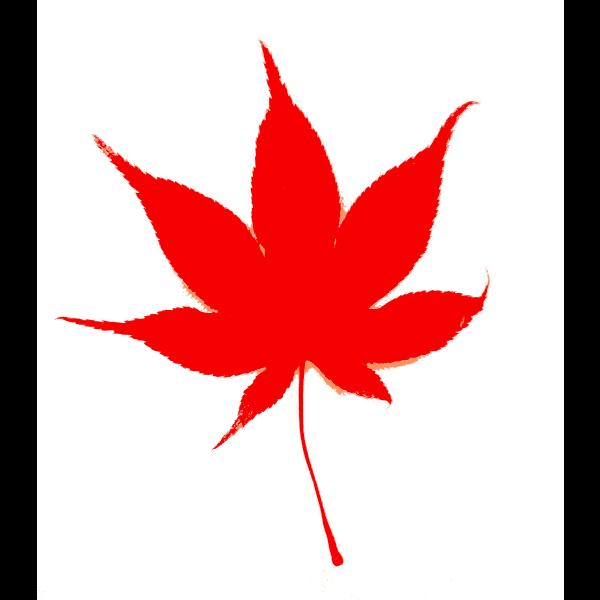 Japanese Fall Leaf Color 2014111057