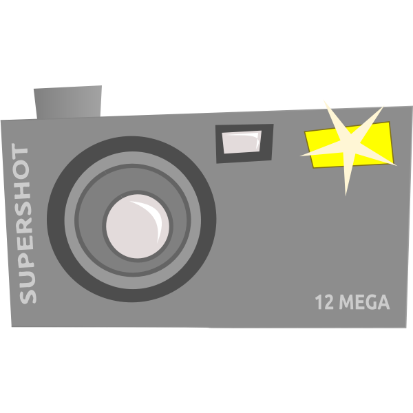 Vector drawing of fancy camera icon