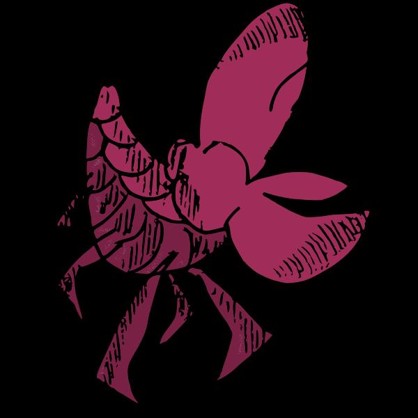 Shellfish-1583917526