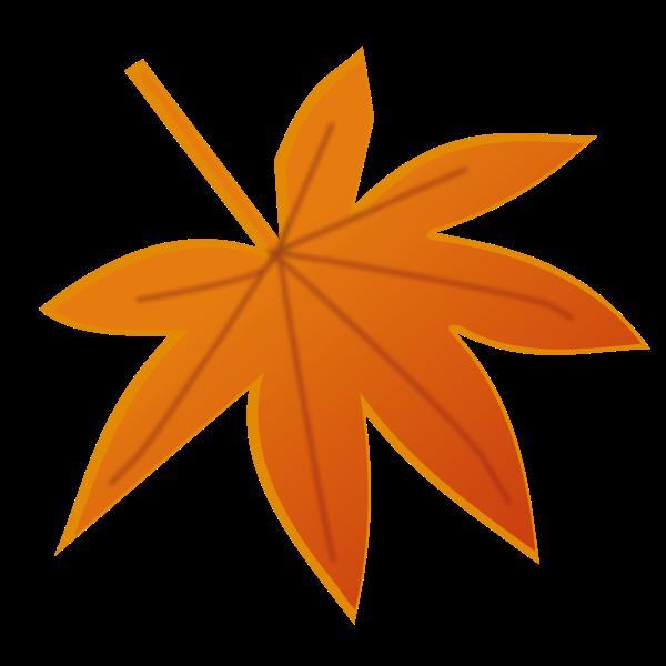 Orange autumn leaf vector image