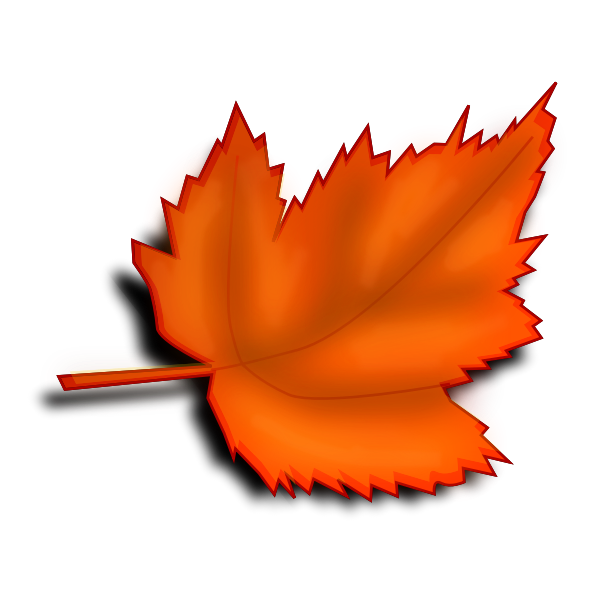 Autumn brown leaf vector image