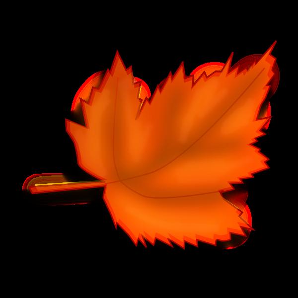 Autumn brown leaf vector image