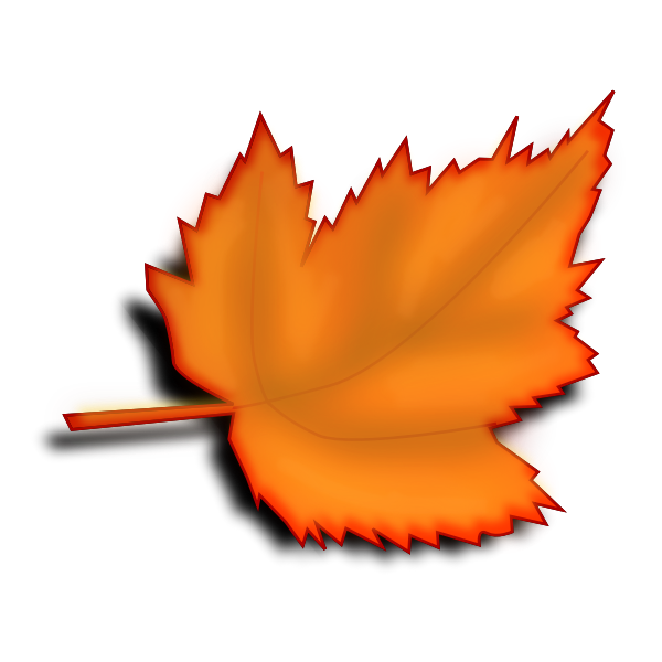 Yellow autumn maple leaf vector image