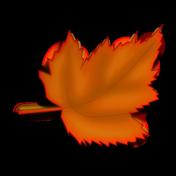 Orange fall leaf vector image