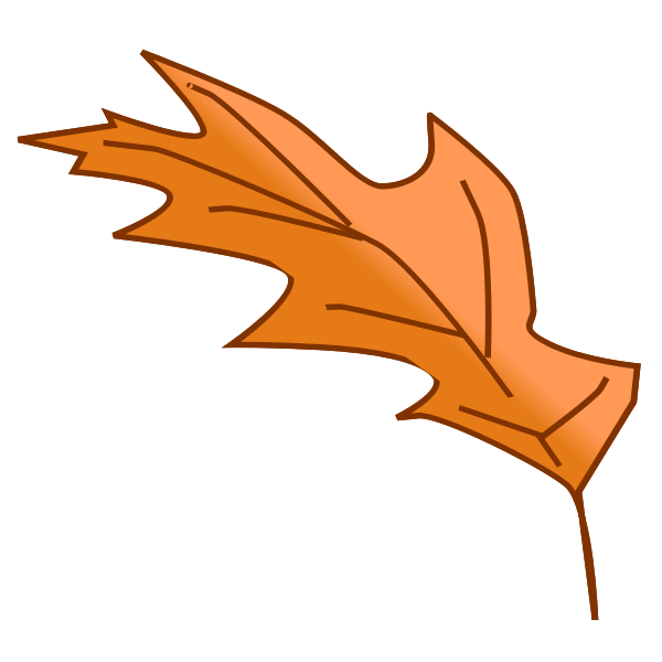 Oak tree autumn leaf vector image