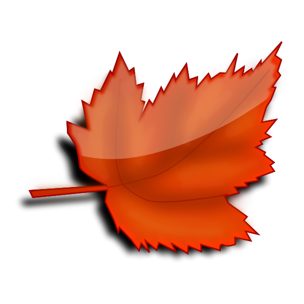 Glossy autumn leaf vector image