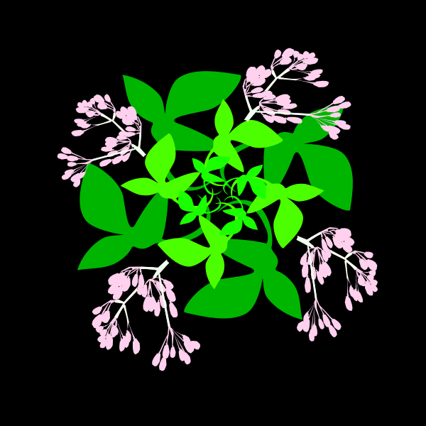 Leaves and blossoms 03
