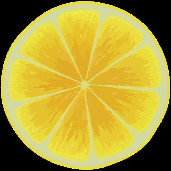 Yellow citrus slice