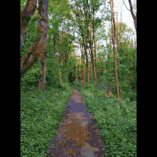Lichtscheid Forest Again 3 2015071548