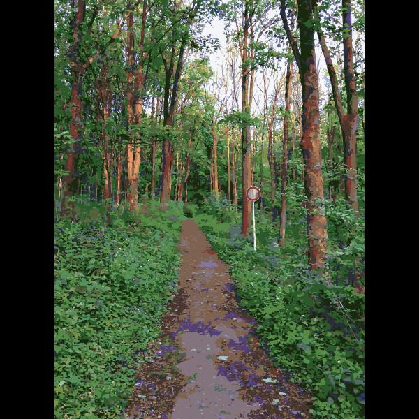 Lichtscheid Forest Again 4 2015071548