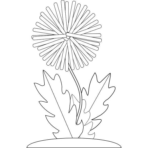 Vector drawing of dandelion flower for color book