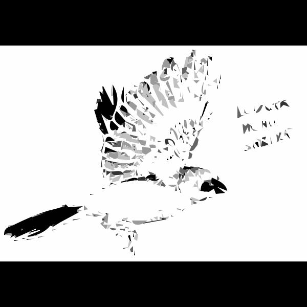 Logger head Shrike Bird