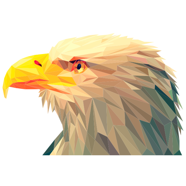 Low Poly Bald Eagle