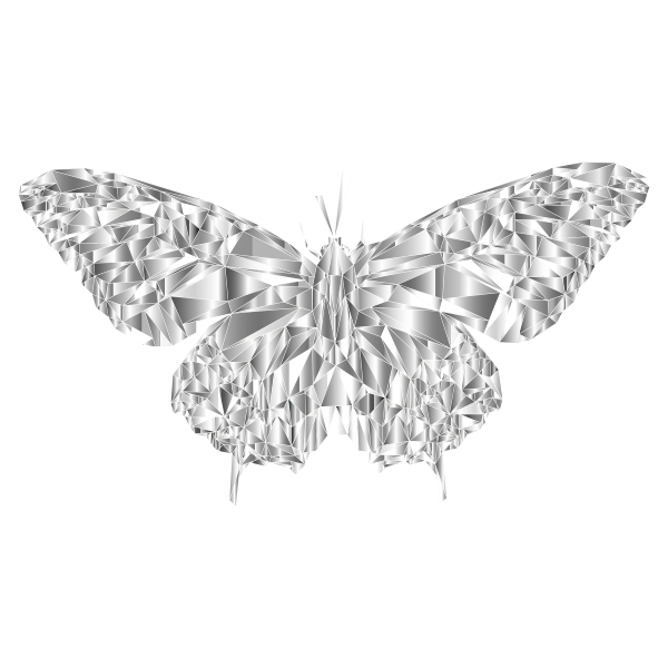 Low Poly Butterfly Prismatic 5