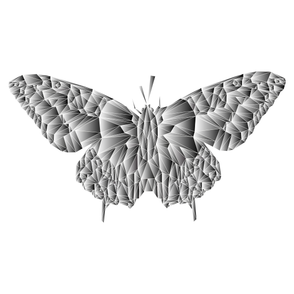 Low Poly Butterfly Prismatic 8