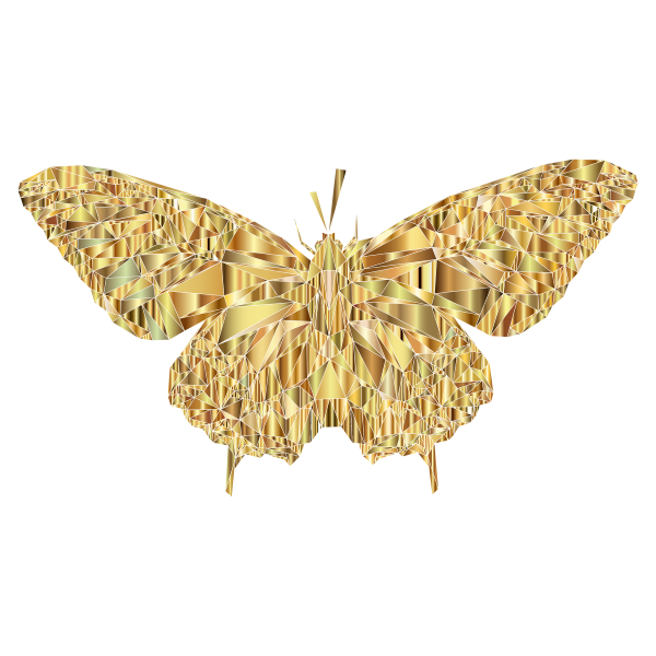 Low Poly Butterfly Prismatic 9