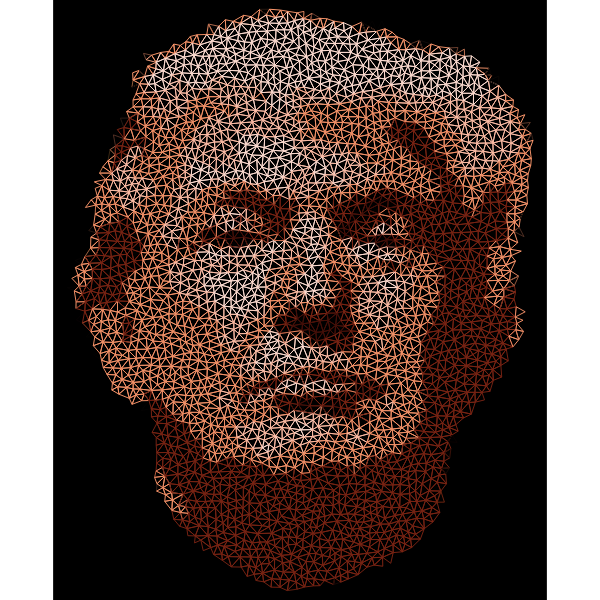 Low Poly Trump Head Wireframe