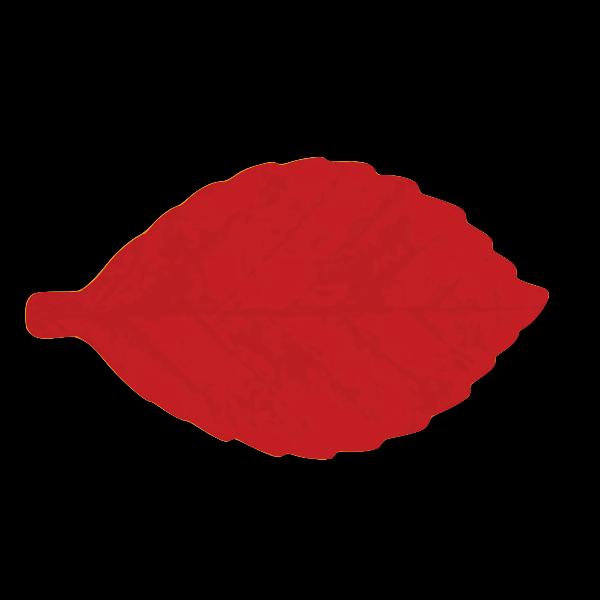M Leaf 04