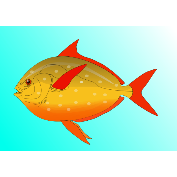 Fish vector art