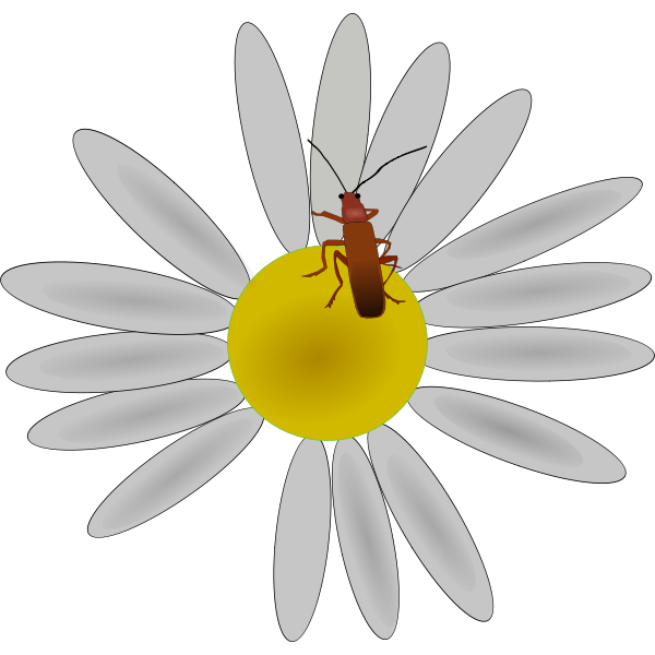 Bug on a flower vector