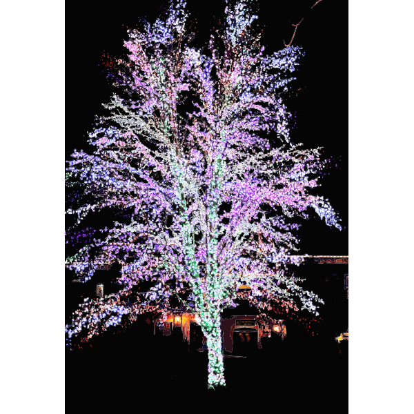 Magic Tree 2015051033