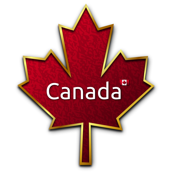Maple leaf with golden trim vector