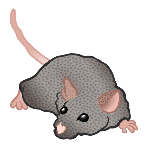 Sniffing mouse