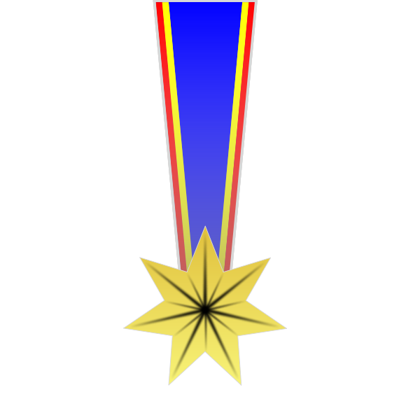 Star shaped military medal vector image