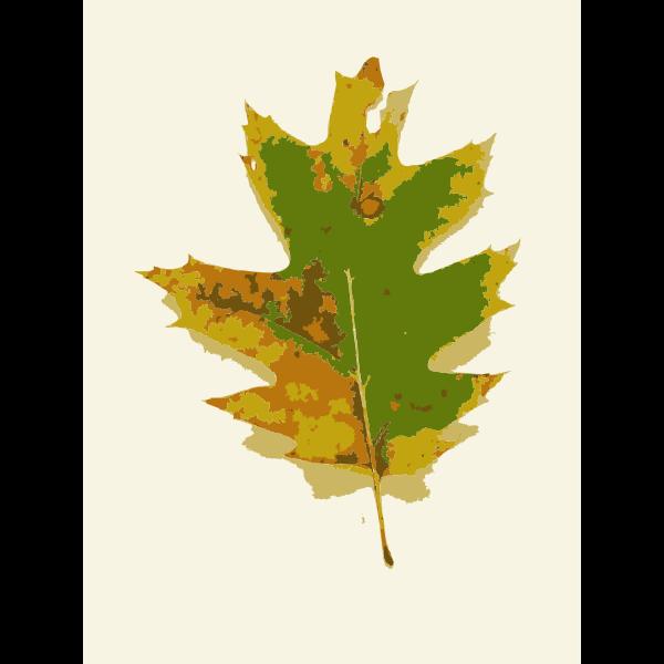 Missouri Fall Tree Leaves 1
