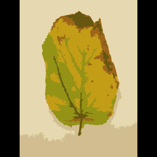 Missouri Fall Tree Leaves 3