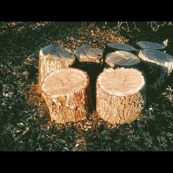 Missouri Nature 1 2015011228