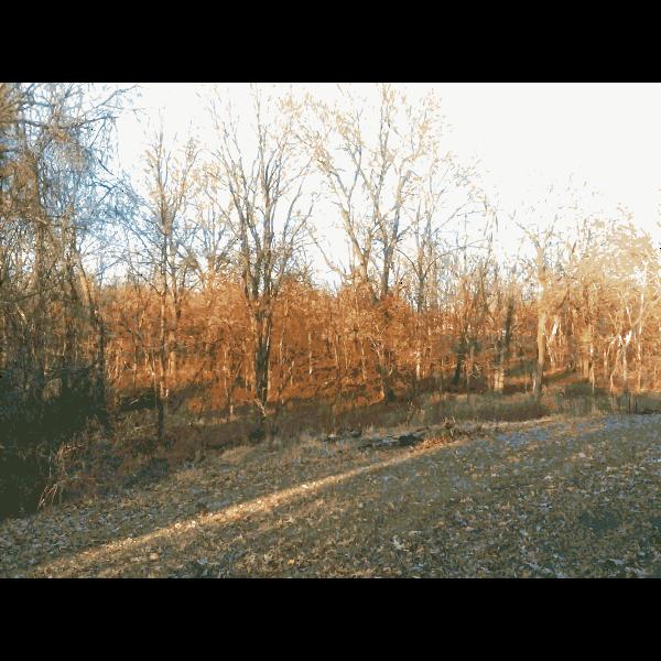 Missouri Nature 2 2015011228