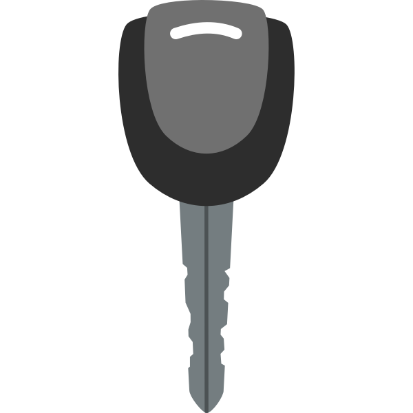 Black and grey vector image of car door key