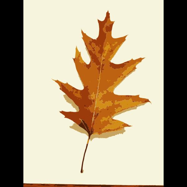 More fall tree leaves 1