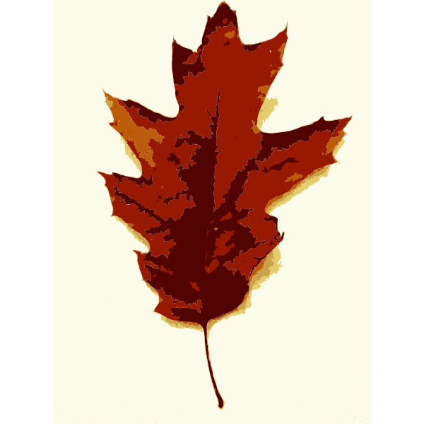 More fall tree leaves 3