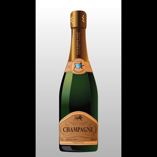 Bottle of champagne vector clip art illustration
