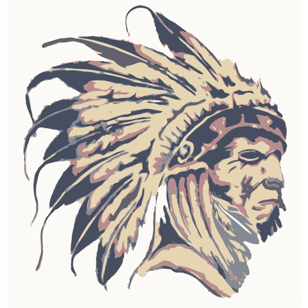 Native American on a painting vector image