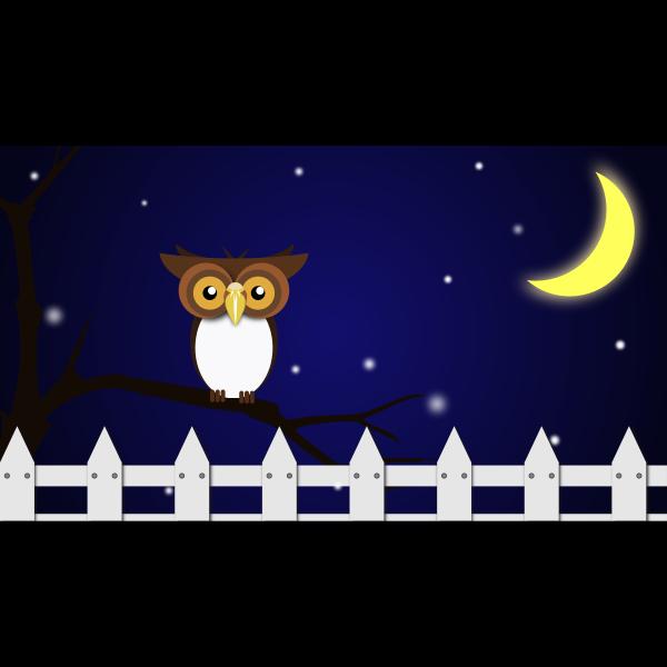 Night Owl 2016110713