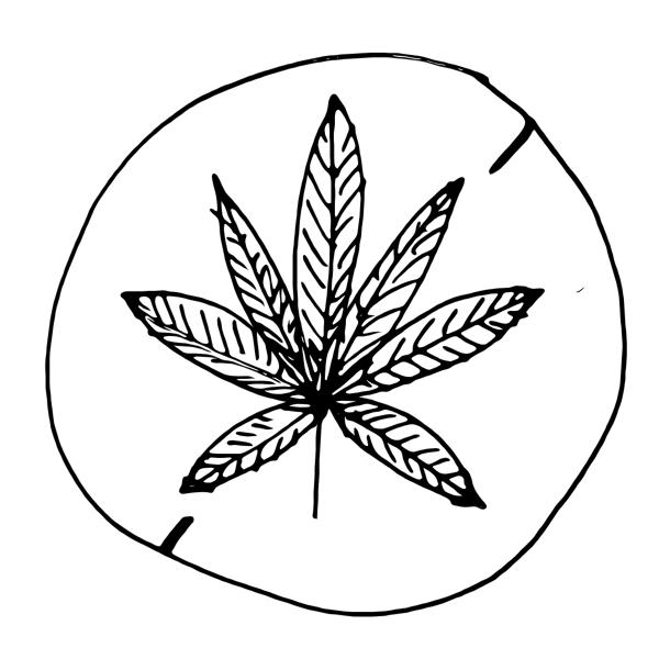 No Marijuana Sign 2016022224