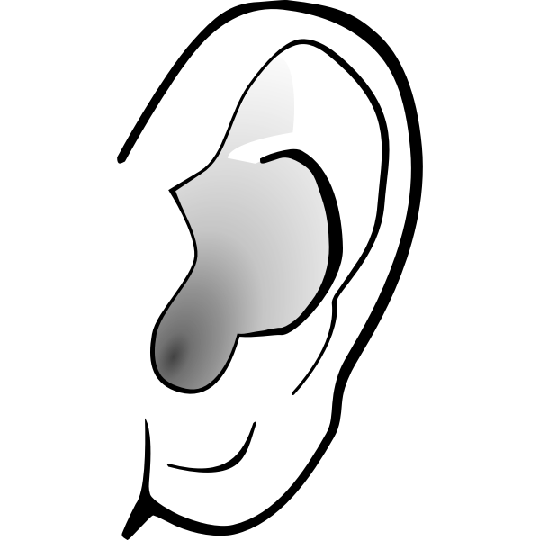 Grayscale image of ear