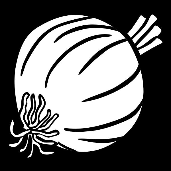 onion - lineart