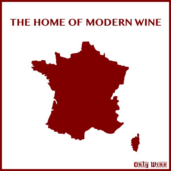 Modern wine home