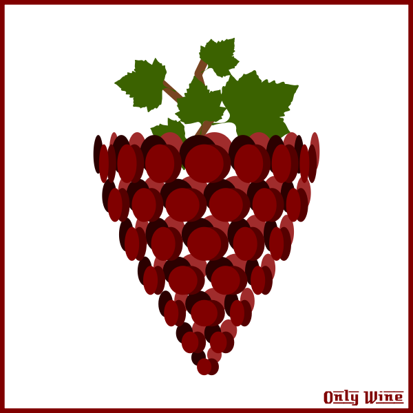 Red arty grapes