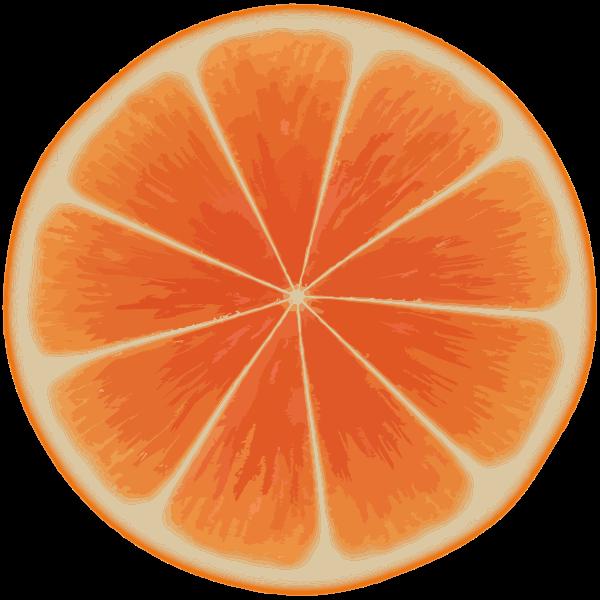 Orange Slice 3