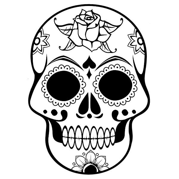 Line art vector image of human skull