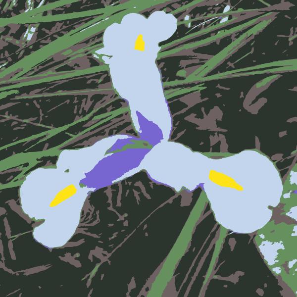 Original Aiflowers 47