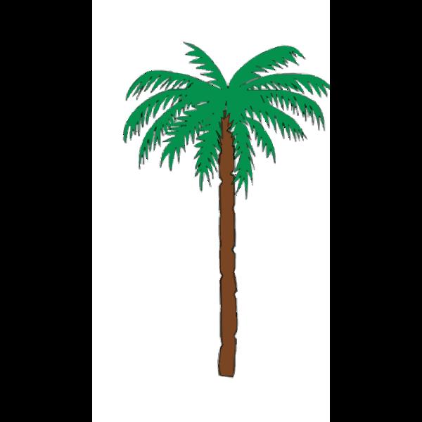 Palm Tree 2015060934
