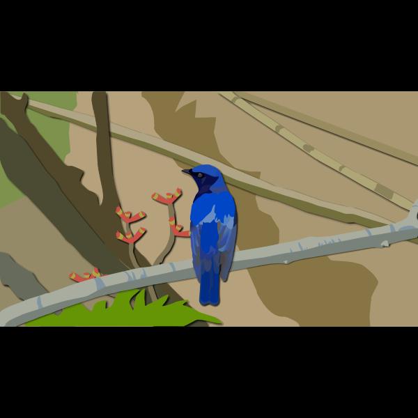 Perched Blue Bird