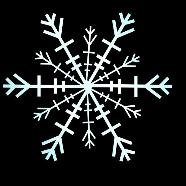 Snowflake vector graphics